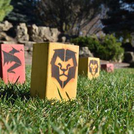 Kingdoms Lawn Game